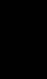 ダチョウ  駝鳥 イラスト 親子 ペン画 リアル