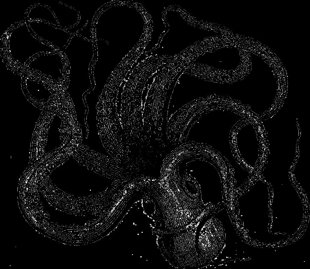 タコ 蛸 オクトパス octopus